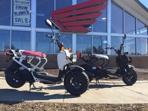2016 Honda Ruckus in Lapeer, Michigan