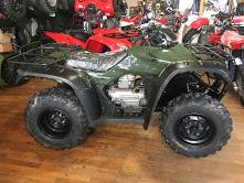 2007 Honda FourTrax® Rancher™ AT in Lapeer, Michigan