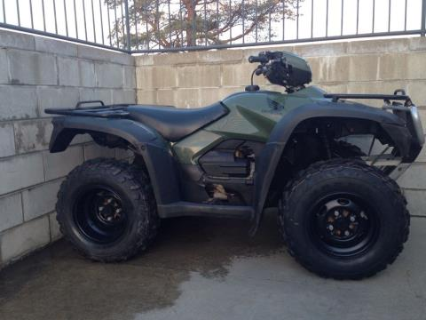 2007 Honda FourTrax® Foreman™ 4x4 ES in Lapeer, Michigan