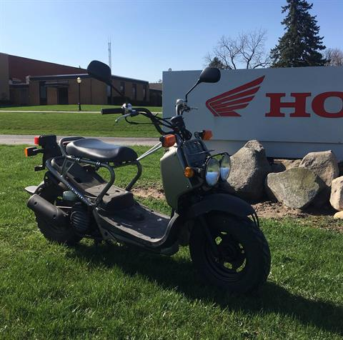 2008 Honda Ruckus® in Lapeer, Michigan
