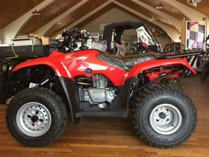 2017 Honda FourTrax Recon Red (TRX250TM) in Lapeer, Michigan