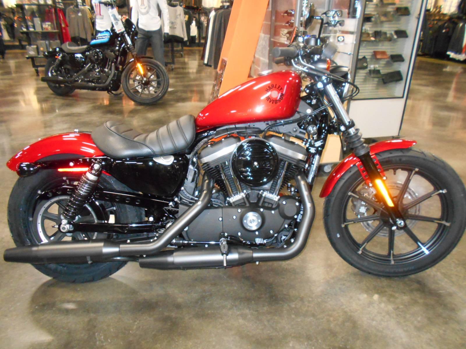 8045d28992c 2019 Harley-Davidson Iron 883™ in Mauston, Wisconsin