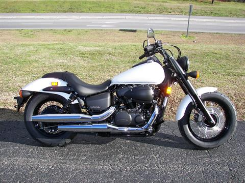 2019 Honda Shadow Phantom in Shelby, North Carolina - Photo 1