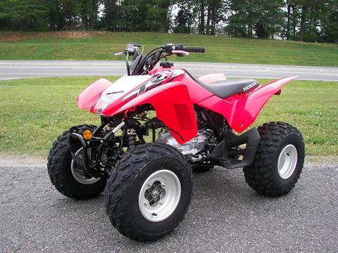 2019 Honda TRX250X in Shelby, North Carolina - Photo 3