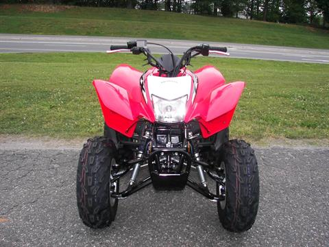 2019 Honda TRX250X in Shelby, North Carolina - Photo 5