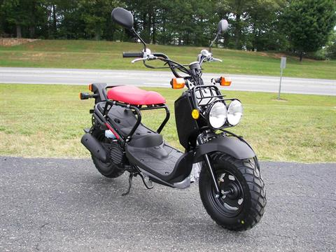 2020 Honda Ruckus in Shelby, North Carolina - Photo 3