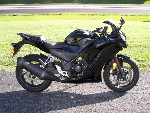 2015 Honda CBR®300R in Shelby, North Carolina