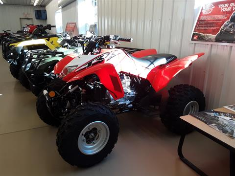 2019 Honda TRX250X in Harrisburg, Illinois