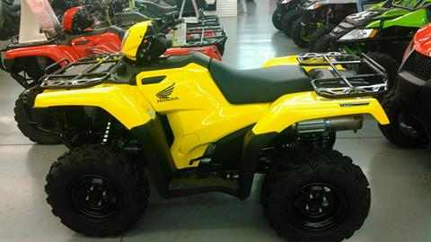 2017 Honda FourTrax Foreman Rubicon 4x4 EPS in Harrisburg, Illinois