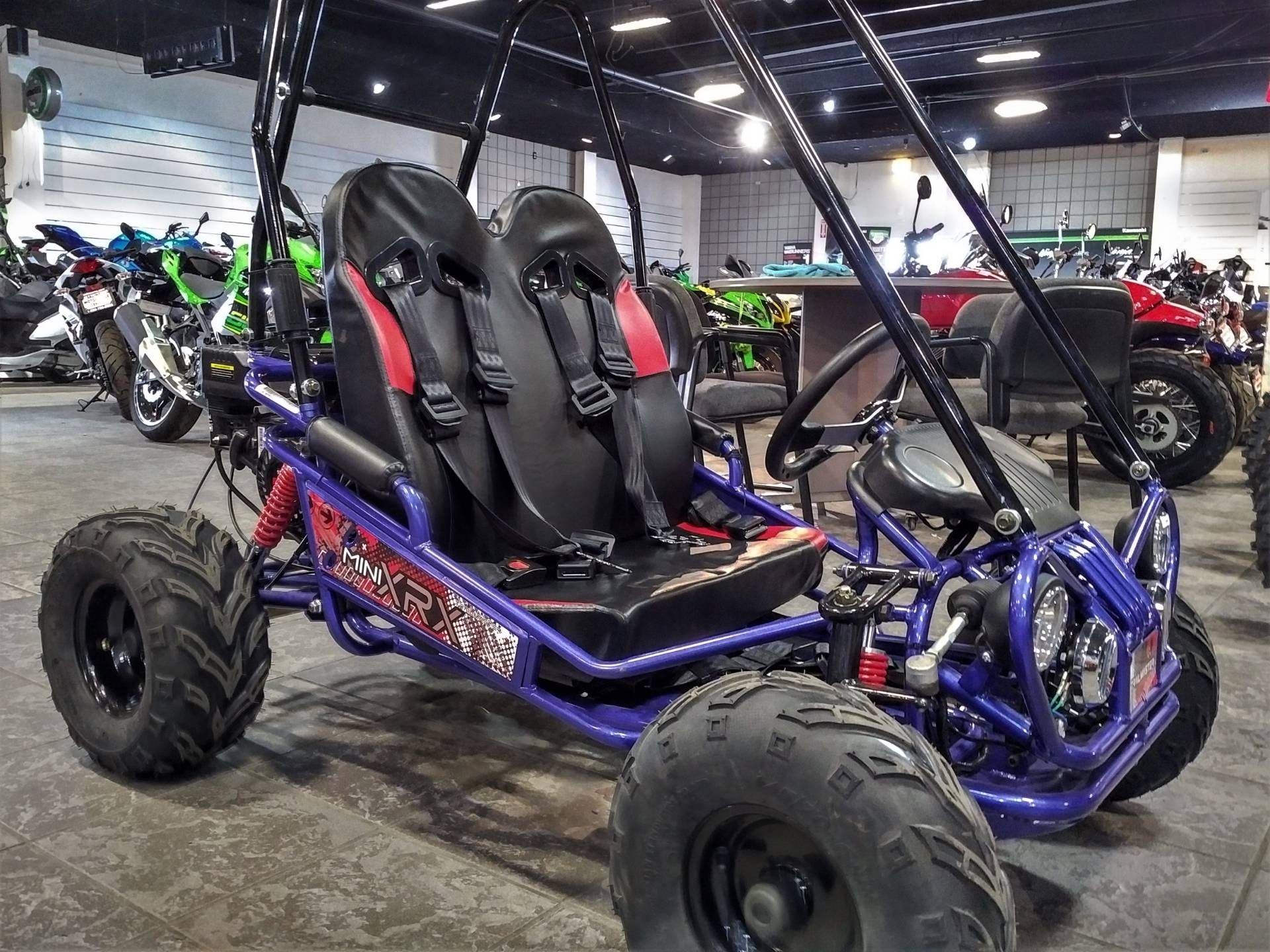 2019 TRAILMASTER MINI XRS+ in Salinas, California - Photo 4