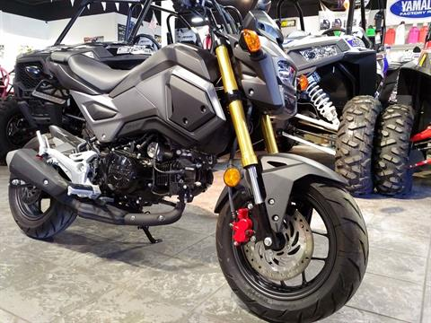 2017 Honda Grom in Salinas, California