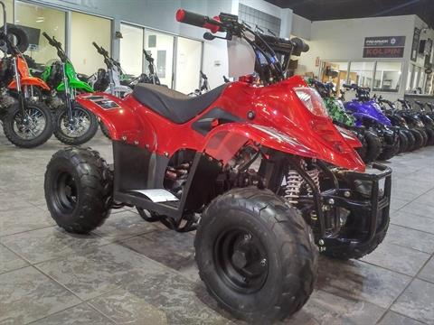 2019 Coolster ATV-3050C in Salinas, California - Photo 4