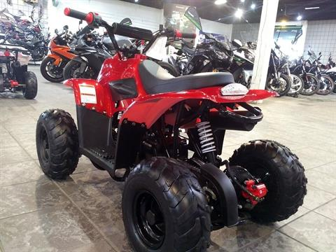 2019 Coolster ATV-3050C in Salinas, California - Photo 8