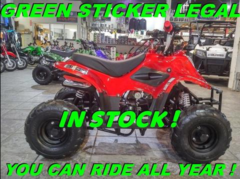 2019 Coolster ATV-3050C in Salinas, California - Photo 1