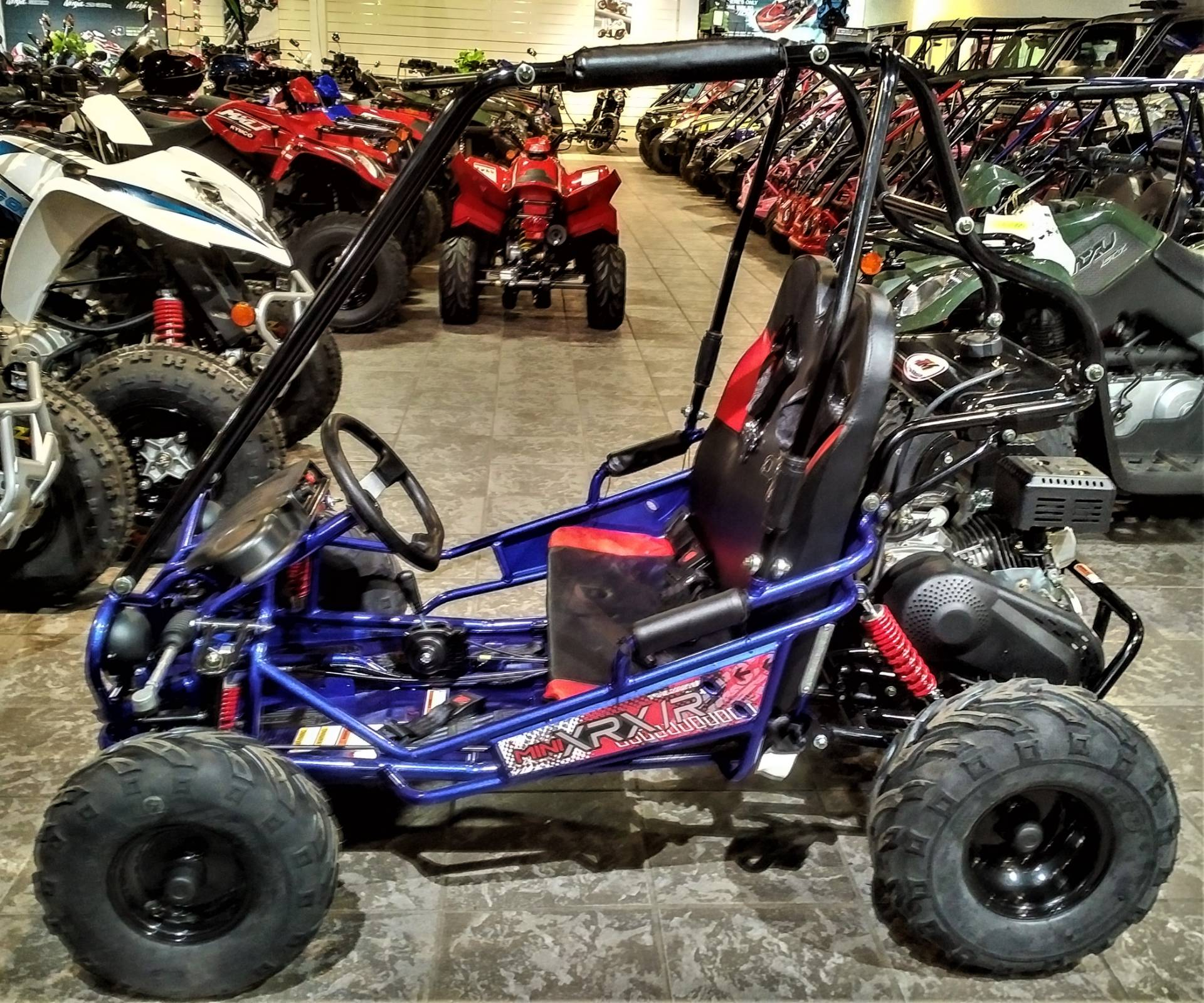 2019 TRAILMASTER MINI XRX/R in Salinas, California - Photo 3