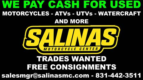 2014 Kawasaki Ninja® 300 in Salinas, California - Photo 2