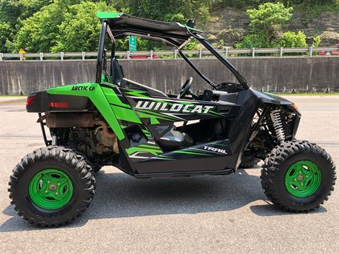 2017 Arctic Cat Wildcat Trail in Pikeville, Kentucky
