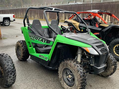 2017 Arctic Cat Wildcat Trail in Pikeville, Kentucky - Photo 2