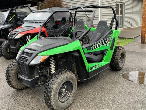 2017 Arctic Cat Wildcat Trail in Pikeville, Kentucky - Photo 3