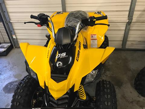 2017 Can-Am DS 250 in Pikeville, Kentucky
