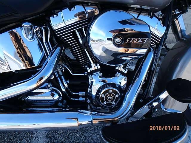 2016 Harley-Davidson Heritage Softail Classic 3