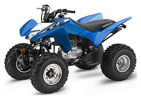 2019 Honda TRX250X in Massillon, Ohio