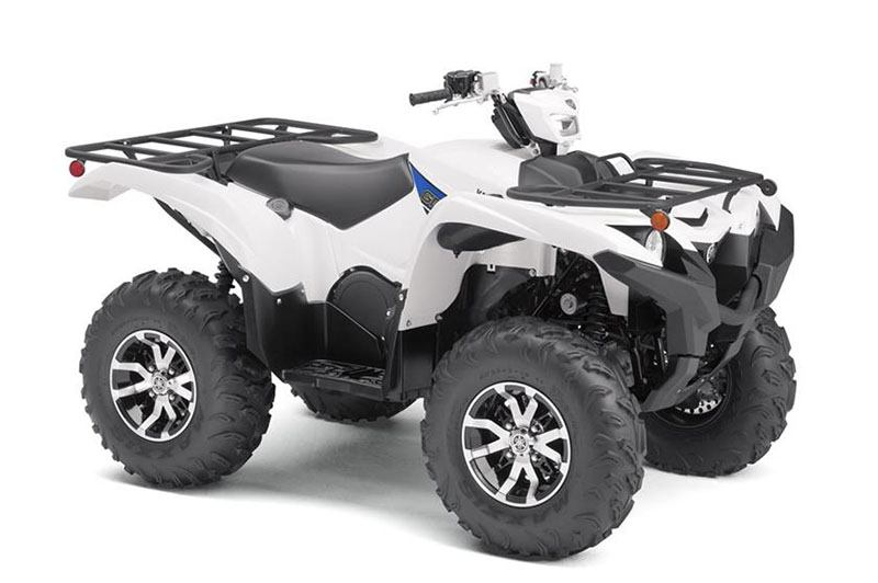 2019 Yamaha Grizzly EPS 2