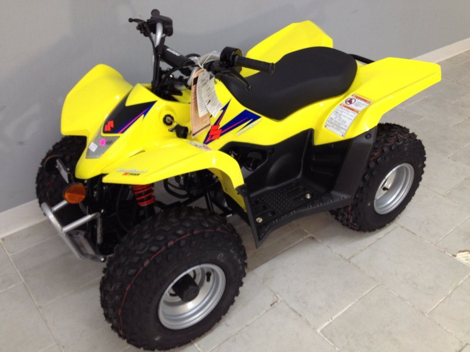 2020 Suzuki QuadSport Z50 in Belleville, Michigan - Photo 6