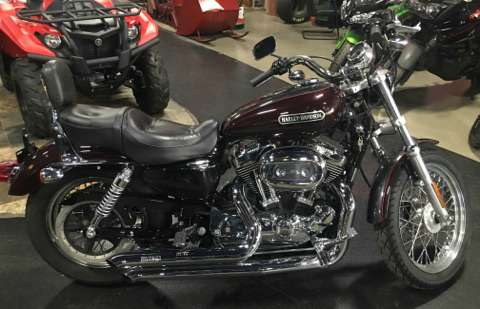 2006 Harley-Davidson Sportster® 1200 Low in Dimondale, Michigan