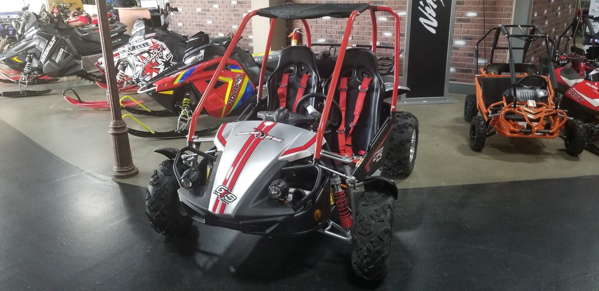 2019 Hammerhead Off-Road GTS Platinum in Dimondale, Michigan - Photo 2
