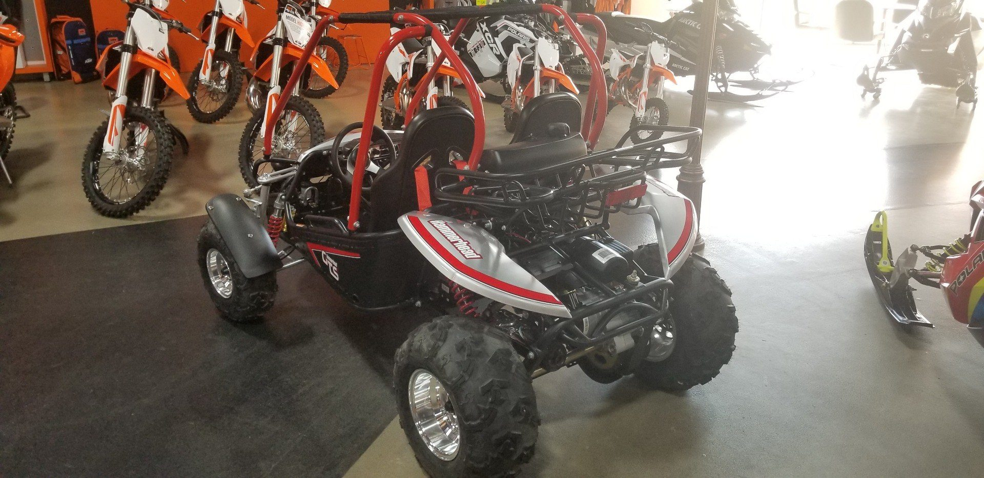 2019 Hammerhead Off-Road GTS Platinum in Dimondale, Michigan - Photo 4