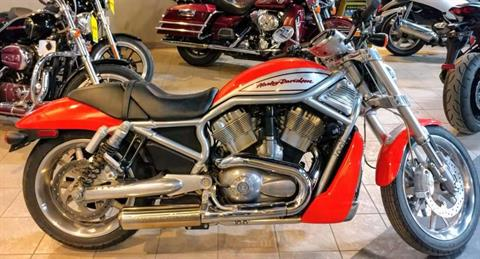 2006 Harley-Davidson Street Rod™ in Dimondale, Michigan