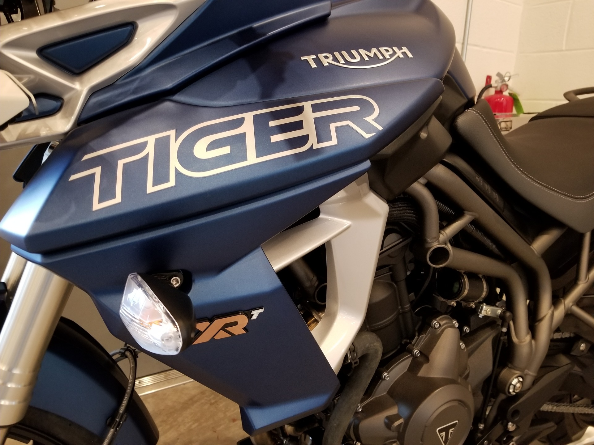 2019 Triumph Tiger 800 XRt in Port Clinton, Pennsylvania - Photo 1