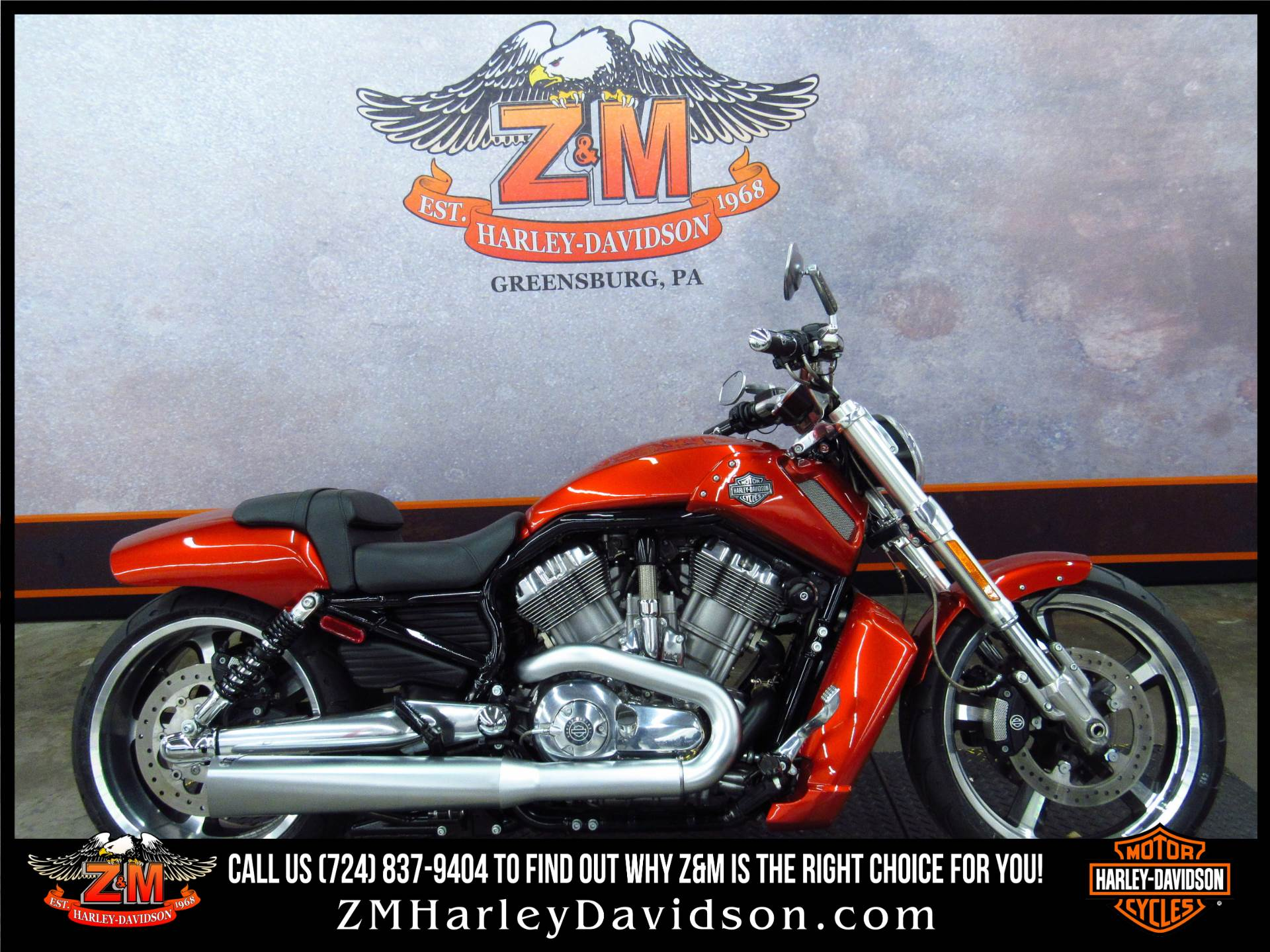 2013 V-Rod Muscle