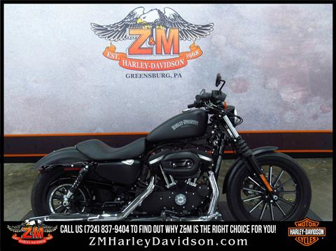 2014 Harley-Davidson Sportster® Iron 883™ in Greensburg, Pennsylvania
