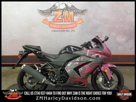 2012 Kawasaki Ninja® 250R in Greensburg, Pennsylvania - Photo 1