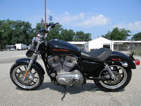 2011 Harley-Davidson Sportster® 1200 Low in Springfield, Massachusetts