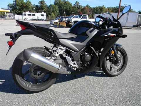 2015 Honda CBR®300R in Springfield, Massachusetts