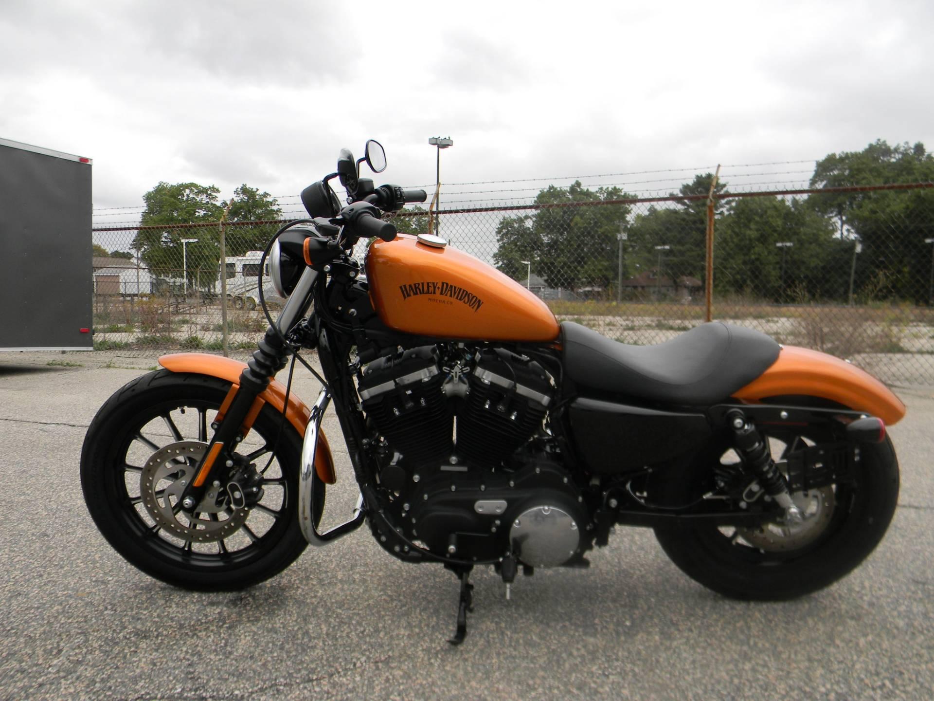 2014 Harley-Davidson Sportster® Iron 883™ in Springfield, Massachusetts