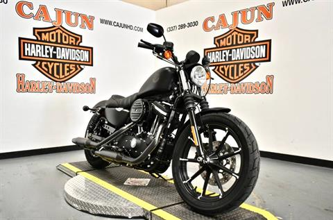 2020 Harley-Davidson Iron 883™ in Scott, Louisiana - Photo 6