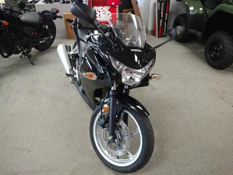 2011 Honda CBR®250R in Warren, Michigan