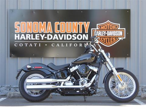 2021 Harley-Davidson SOFTAIL STANDARD in Cotati, California - Photo 1