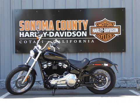 2021 Harley-Davidson SOFTAIL STANDARD in Cotati, California - Photo 3