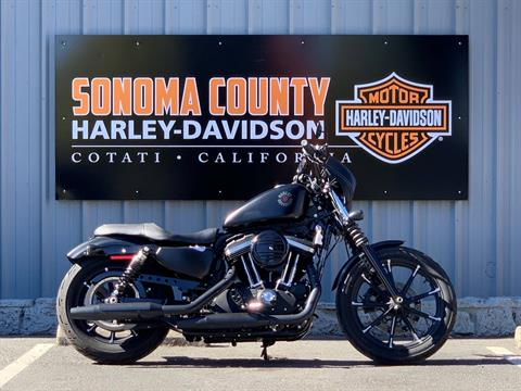 2019 Harley-Davidson SPORTSTER 883 IRON in Cotati, California - Photo 1