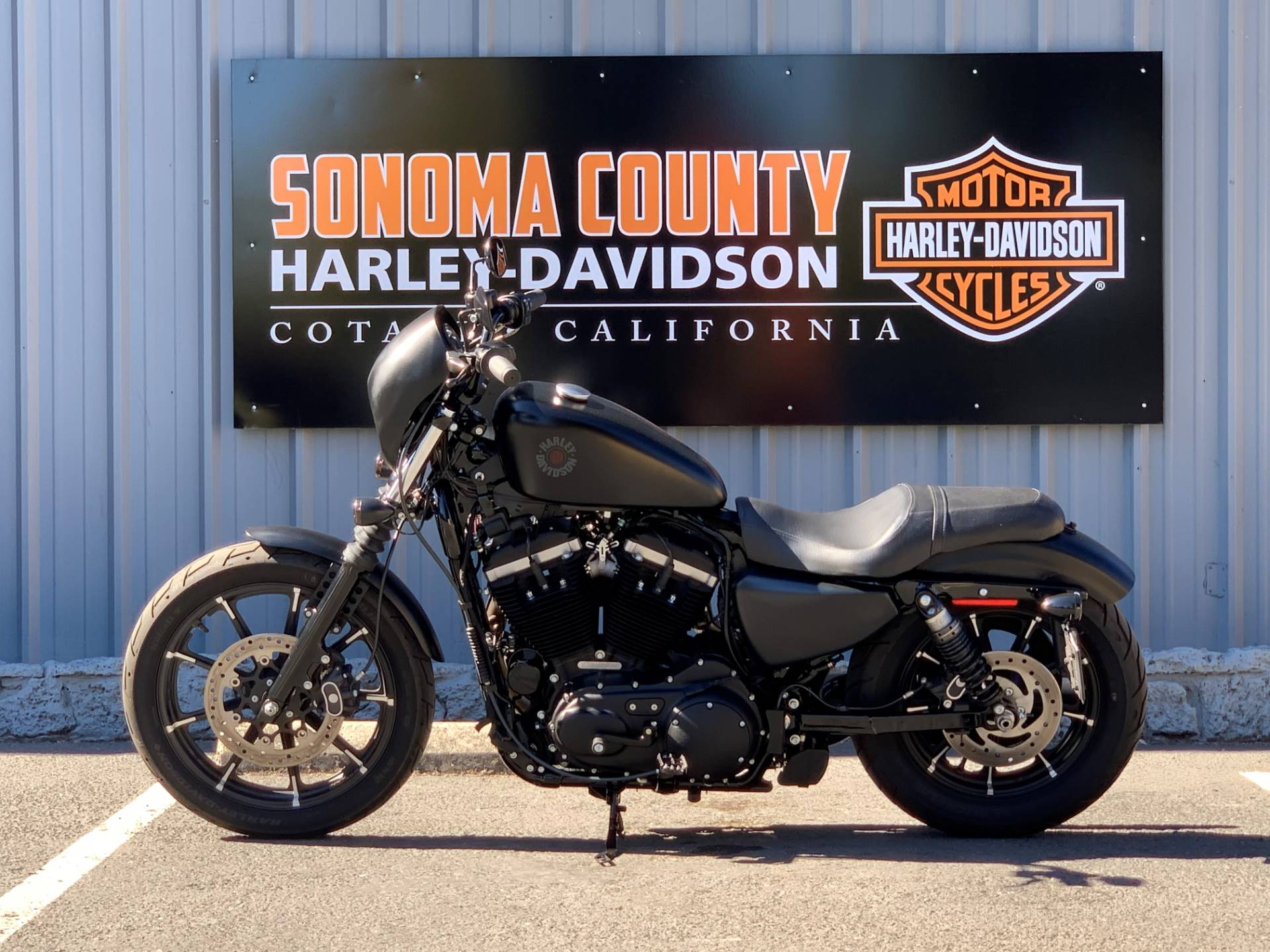 2019 Harley-Davidson SPORTSTER 883 IRON in Cotati, California - Photo 3