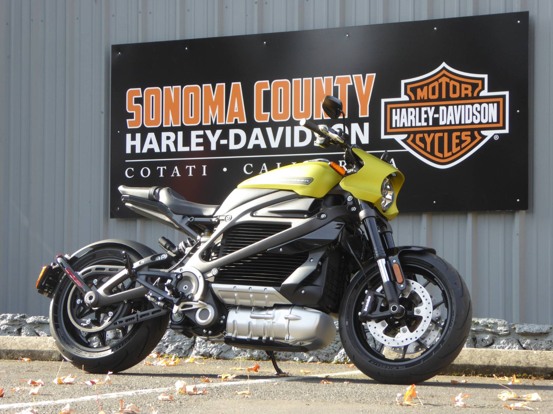 2020 Harley-Davidson Livewire™ in Cotati, California - Photo 1