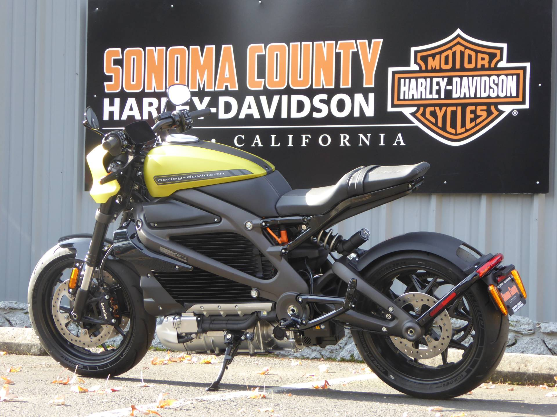 2020 Harley-Davidson Livewire™ in Cotati, California - Photo 5