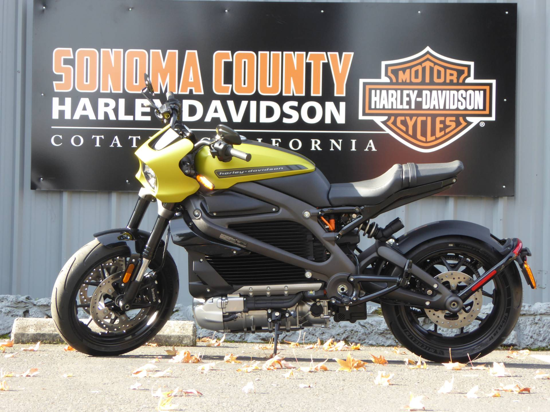 2020 Harley-Davidson Livewire™ in Cotati, California - Photo 6