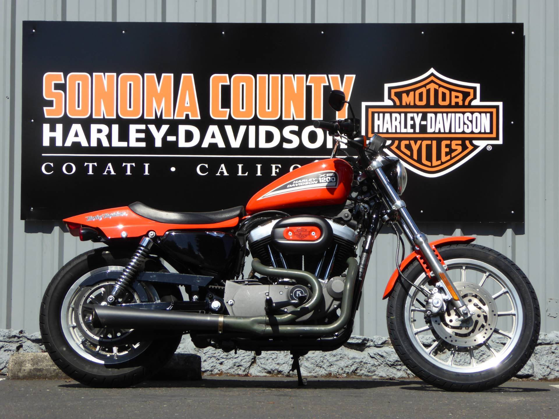 2009 Harley-Davidson XL1200N SPORTSTER NIGHTSTER in Cotati, California - Photo 1