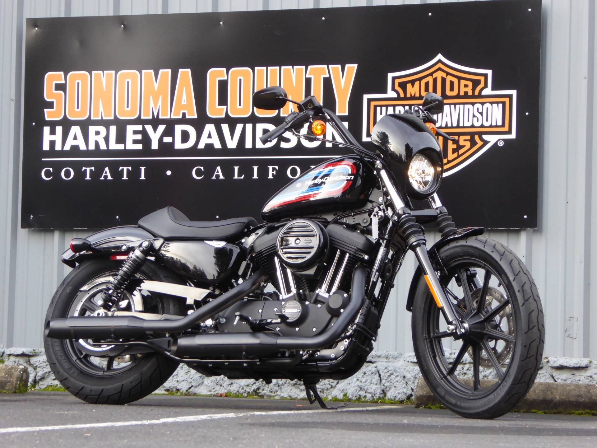 2020 Harley-Davidson Iron 1200™ in Cotati, California - Photo 3